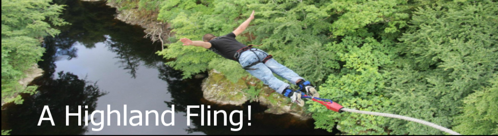 Bungee jump from Garry Bridge
